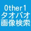 Other1 淘宝(タオバオ) 画像検索方法